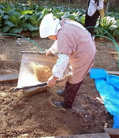 25. 雑穀自由学校〜つぶつぶみんなで育てよう!