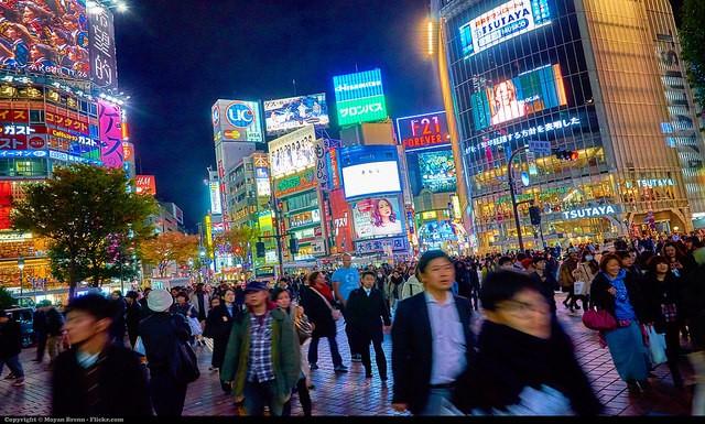 2015年 日本の争点