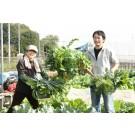 東京で農業!2015