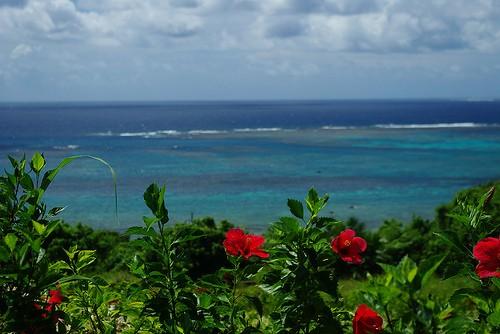 26. はじめてのウチナーグチ(沖縄語)―沖縄の豊かな文化を学ぶ