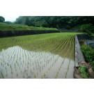 15. どうする日本の食と農